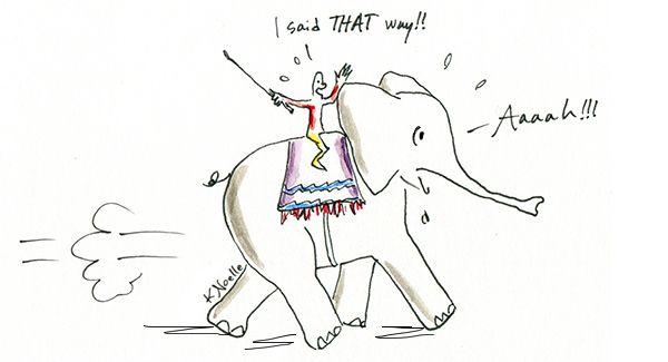 noelle-elephant-rider